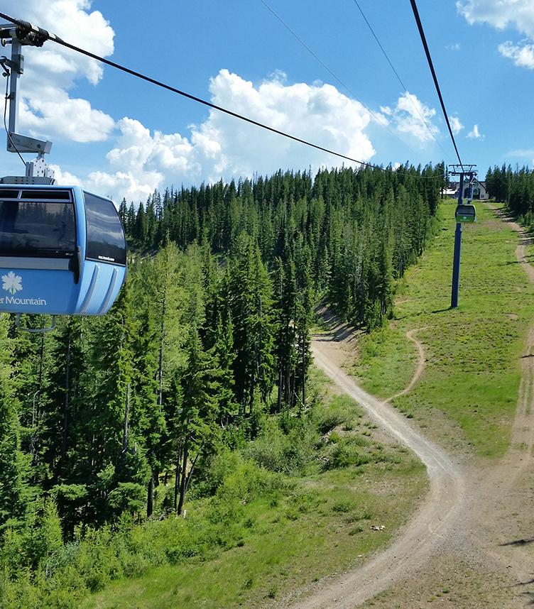 Silver Mountain Web Cams mobile image