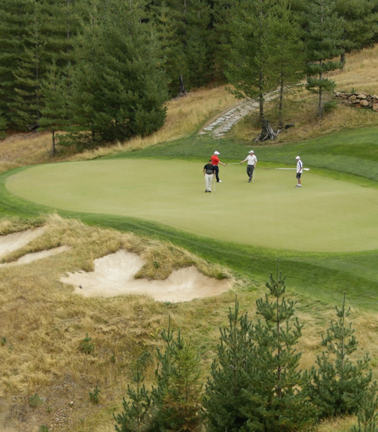 Golf mobile image