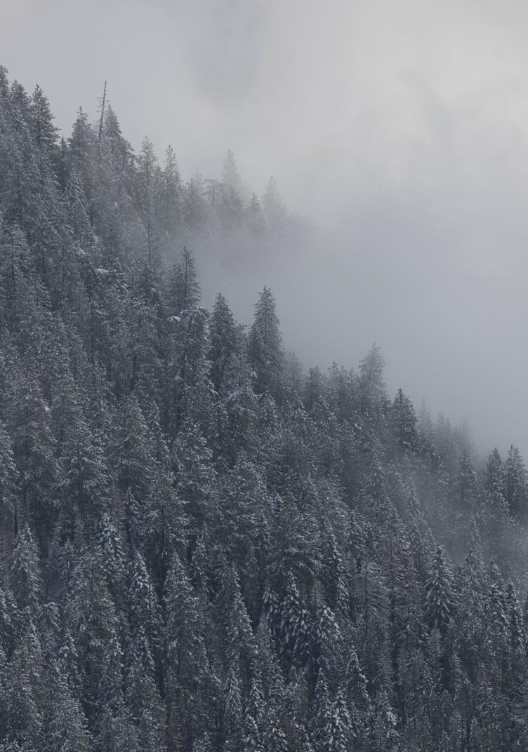 Mountain Safety mobile image