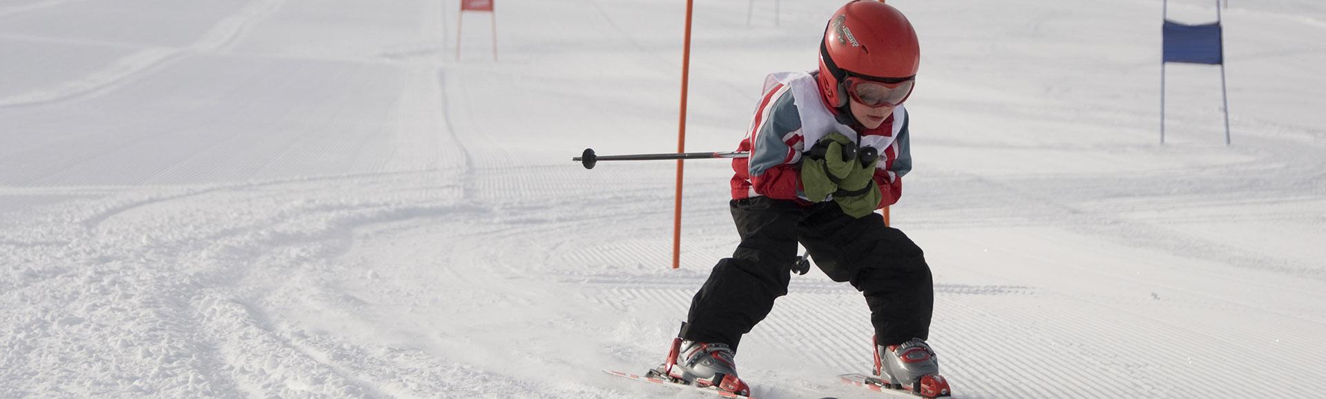 Alpine Race Team desktop image