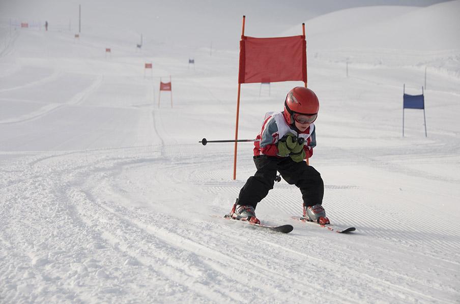 Alpine Race Team